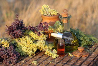 Лекарственные Растения от А до Я